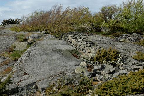 hummerbakkfjorden-revet-gan